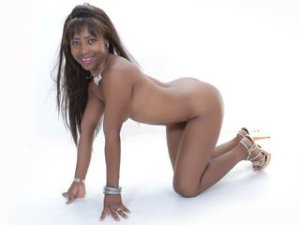 Webcam sex black africaine de SteffyHotty