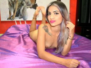 Webcam sex de WildToysBet
